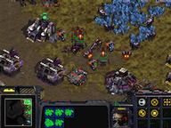 Starcraft Quizzes, Trivia and Puzzles