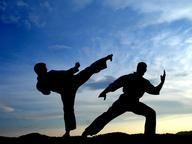 Martial Arts and Action Mix Quizzes, Trivia and Puzzles