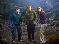 Order of the Phoenix  Quizzes, Trivia and Puzzles