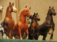 Breyer Horses Quizzes, Trivia and Puzzles