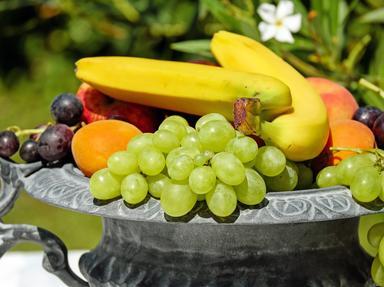 Fruit Mixture Quizzes, Trivia and Puzzles