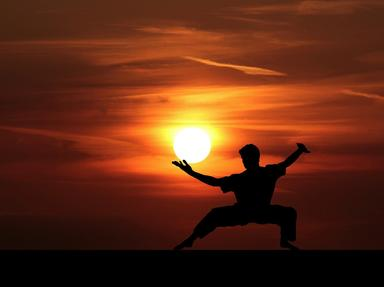 Martial Arts Quizzes, Trivia and Puzzles