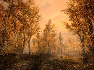 Elder Scrolls V Skyrim Quizzes, Trivia and Puzzles