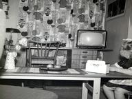 1960s TV Quizzes, Trivia and Puzzles