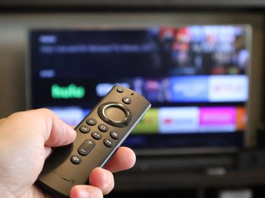 Television Quizzes, Trivia and Puzzles
