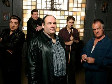 Sopranos Characters Quizzes, Trivia and Puzzles