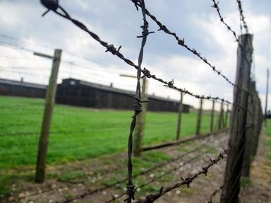 Holocaust Quizzes, Trivia and Puzzles