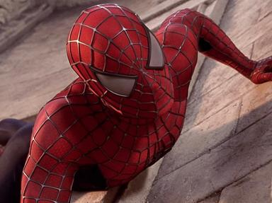 SpiderMan 2002  Quizzes, Trivia and Puzzles