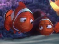 Finding Nemo  Quizzes, Trivia and Puzzles