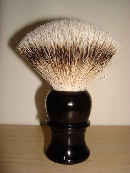 Daft As A Brush Quiz 10 Questions